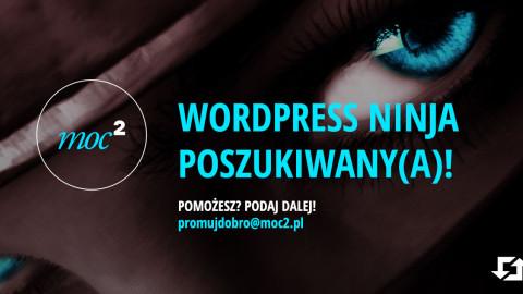 WordPress Ninja Developer poszukiwany